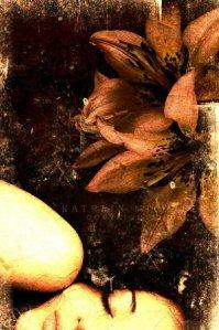 reve_en_noir_by_coffinfairy